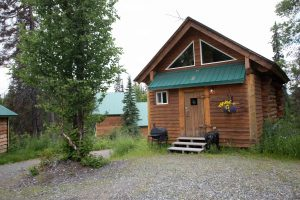 The Loon's Nest Cabin: Exterior
